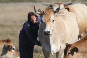 Photos de Ludivine, éleveuse à Notre Dame de Monts (85) et membre de l'AALVie, avec ses vaches. Crédit photo : Frédéric Signoret